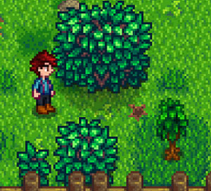 Stardew Valley Animal Mods Related Keywords - Stardew Valley