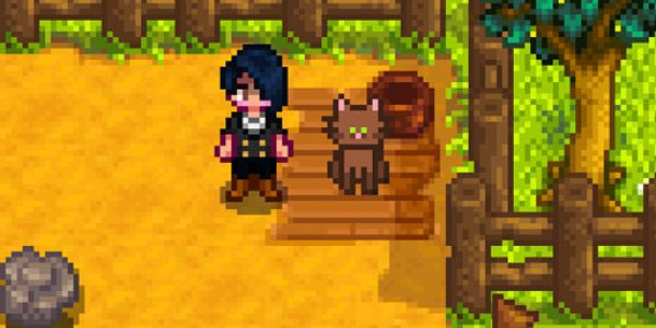 how to add mods to stardew valley